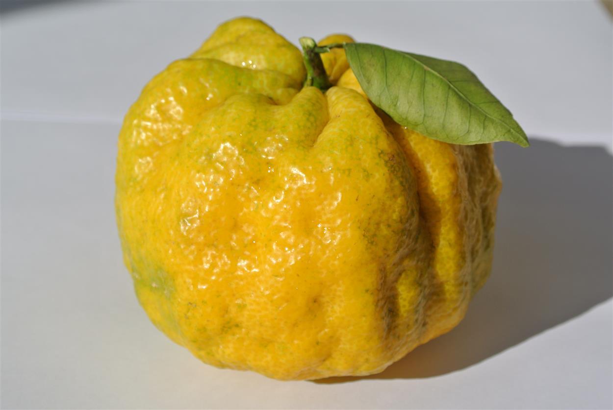 Варенье «Лимондин»